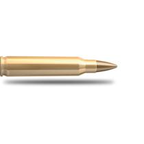 Kulový náboj S&B 22-250 Rem FMJ 3,6 g